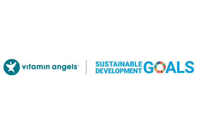 How Do I Know My Non-Profit Partner Is Making an Impact on the SDGs?